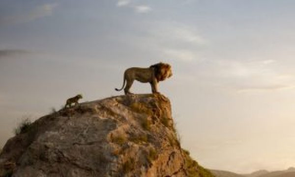 The Lion King: Blackmagic Design was the backbone for the virtual production