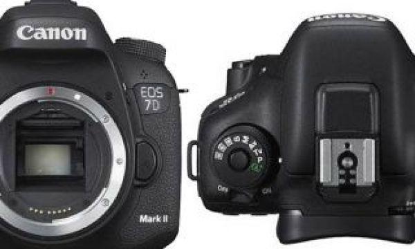 EOS 7D Mark II: the Baby EOS-1D X