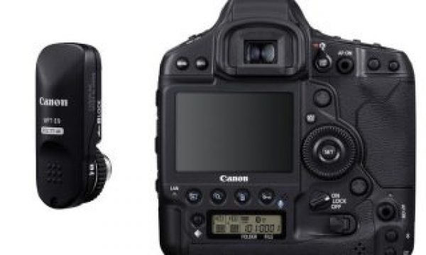 EOS 1-D X Mark III: new SLR mirror system and 5.5K 12-bit RAW video