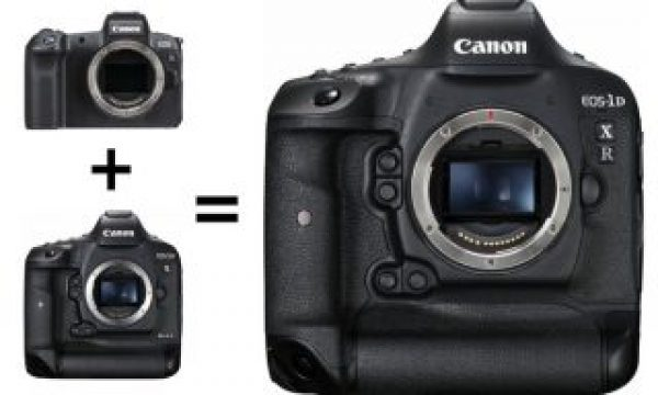 Is Canon working on a Mirrorless DSLR hybrid camera with EF/RF mount?