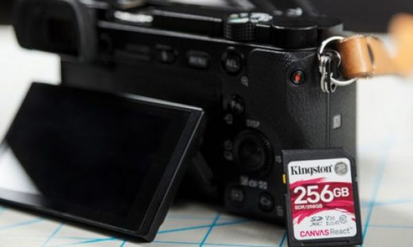 New Kingston Canvas Plus SD cards for 8K production, action cams and drones