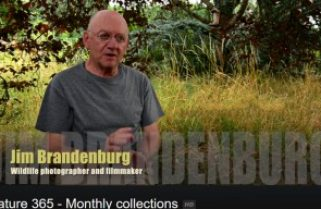 Jim Brandenburg: a photographer's secret videos