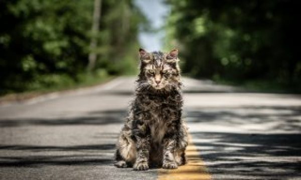 "ART OF THE CUT WITH ""Pet Sematary"" editor, Sarah Broshar"