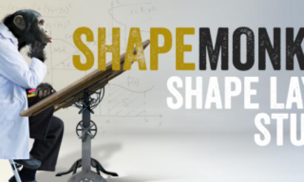 REVIEW – Shape Monkey