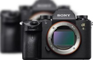 Sony upgrades α9 mirrorless camera via software and updates α7R III and α7 III