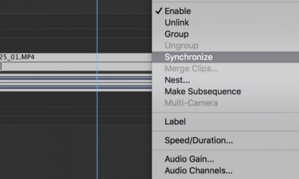 Using 'Synchronize' in Premiere Pro