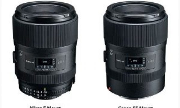 Tokina atx-i 100mm f/2.8 Macro FF: more than a macro lens for full frame DSLRs