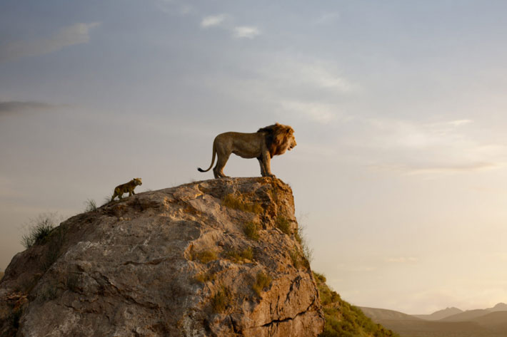 Blackmagic Design was the virtual production's backbone for The Lion King