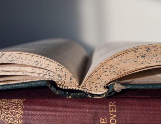 book-856151_1920