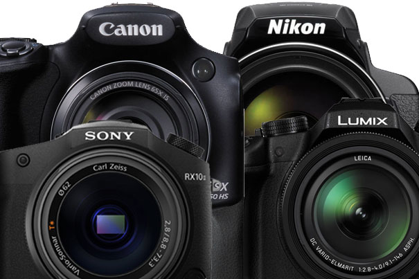 The Best Bridge Cameras for Video in 2015 6