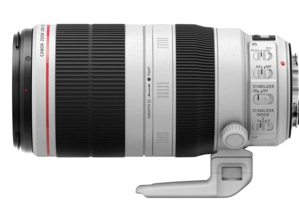 Review: The New Canon EF 100-400mm for Flowers and Bees 1