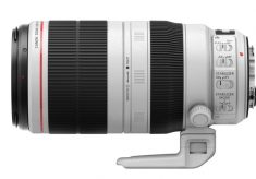 Review: The New Canon EF 100-400mm for Flowers and Bees
