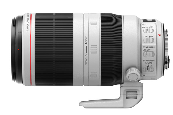 Review: The New Canon EF 100-400mm for Flowers and Bees 2