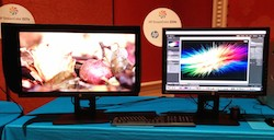 HP revitalizes DreamColor universe with 2 new models 24