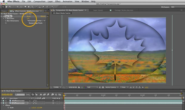 After Effects Apprentice: Creating Transparency 4