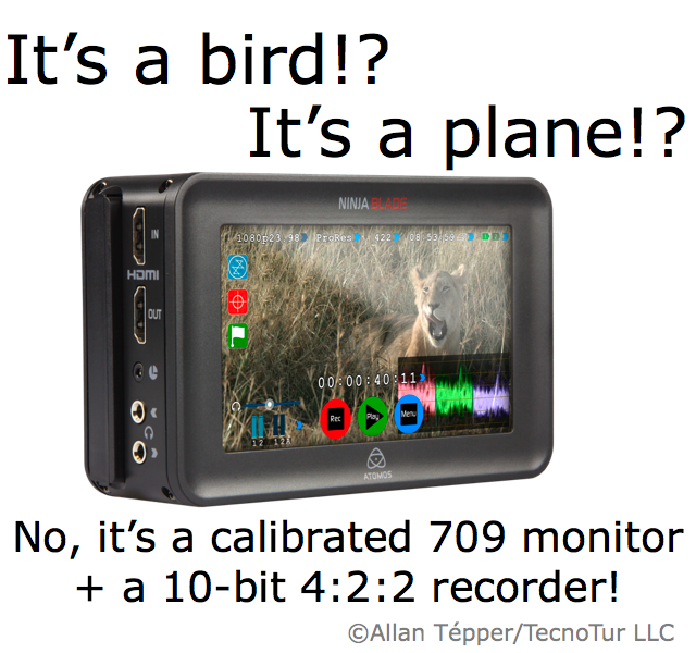 It's a calibrated 709 field monitor! No, a 10-bit 4:2:2 recorder! It's Ninja Blade or Samurai Blade! 14