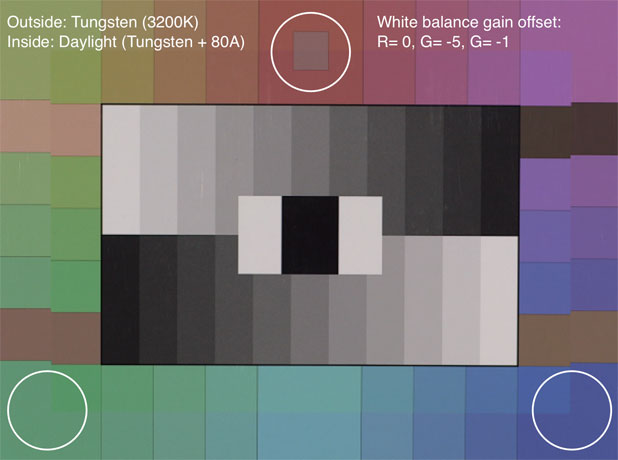 CANON C300: Trimming White Balance, Plus a Look at Daylight vs. Tungsten Color 39
