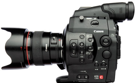 CAMERAS: Thoughts on the Canon C300's Color Science 4