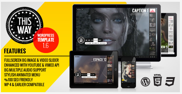 WordPress For Video Professionals 57