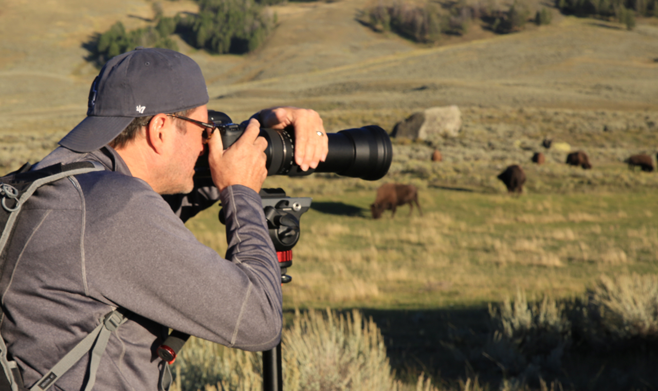 photograph-wild-animals-1