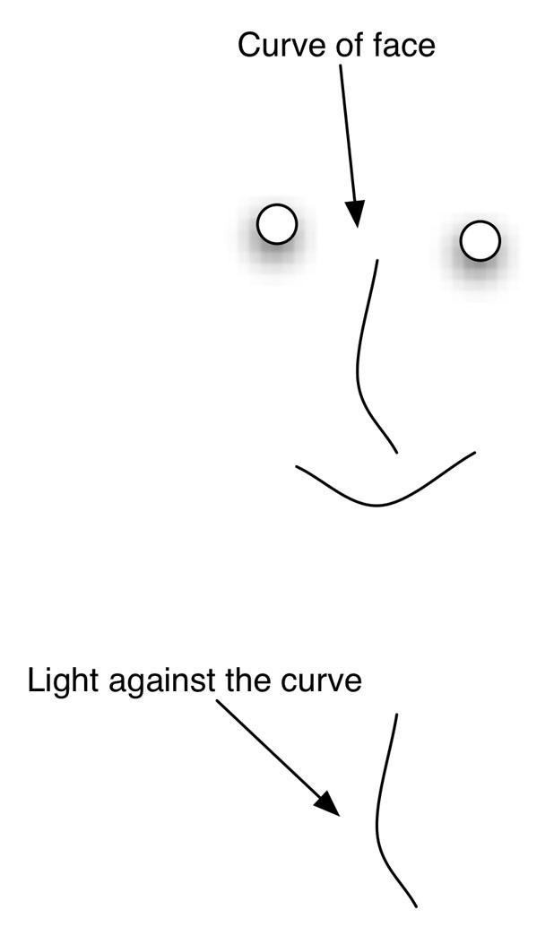 LIGHTING STRATEGIES: Placing a Hard Key Light 36