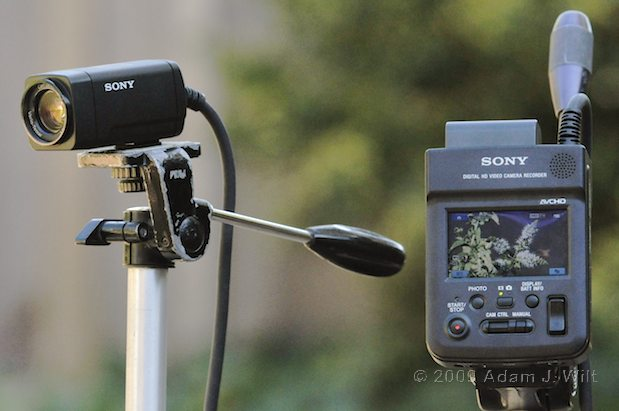 Review: Sony HXR-MC1 1-CMOS AVCHD POV Camcorder 43