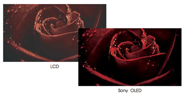 GEEK OUT: The Non-Technical Technical Guide to Sony OLED Monitors 42