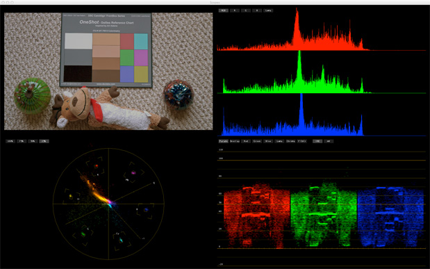CAMERAS: Rough Guide to Color Grading with the DSC Labs OneShot 53