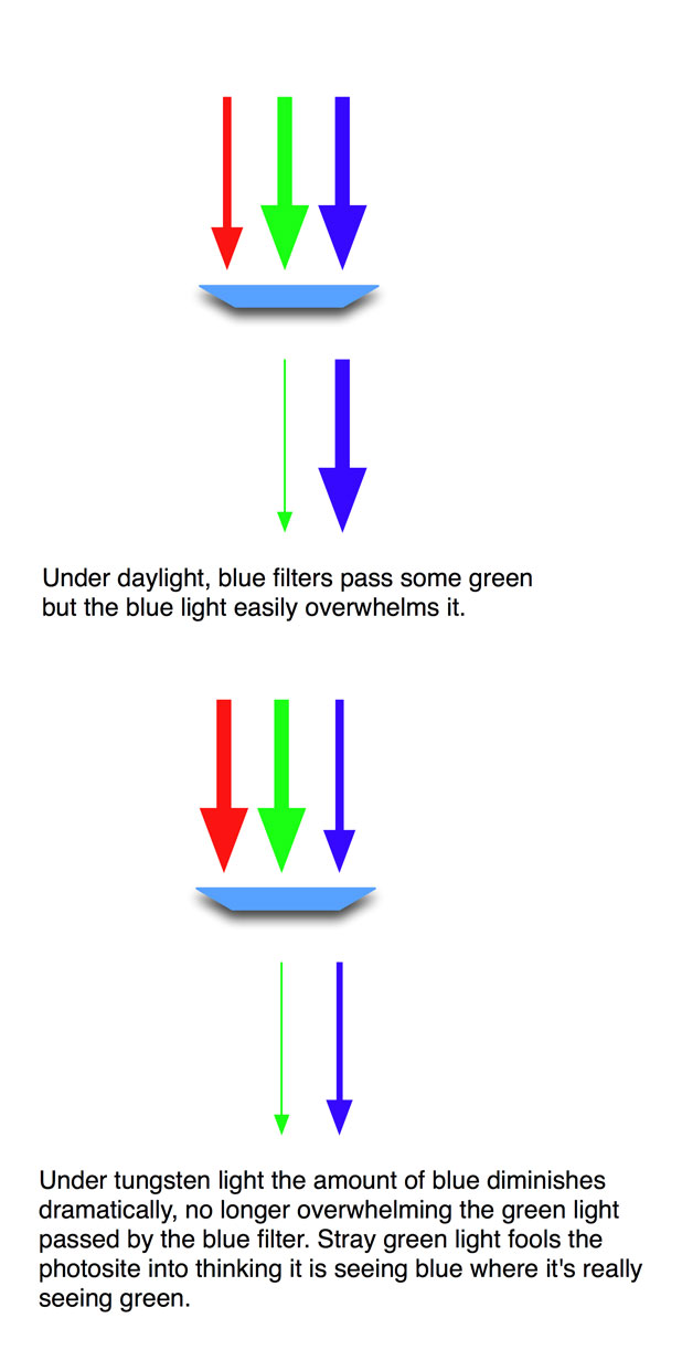 What You Need to Know about Green, Blue and RED 40