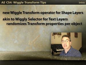 Wiggle Transform Tips 3
