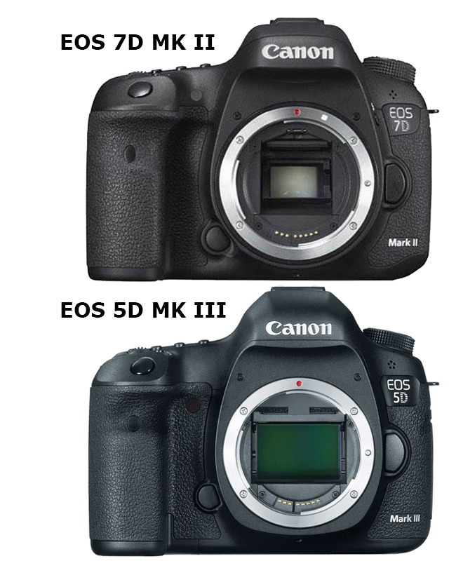 EOS 7D Mark II: the Baby EOS-1D X 13