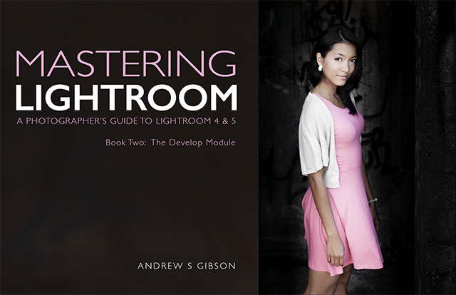 Lightroom: Two eBooks to Learn it Faster 9