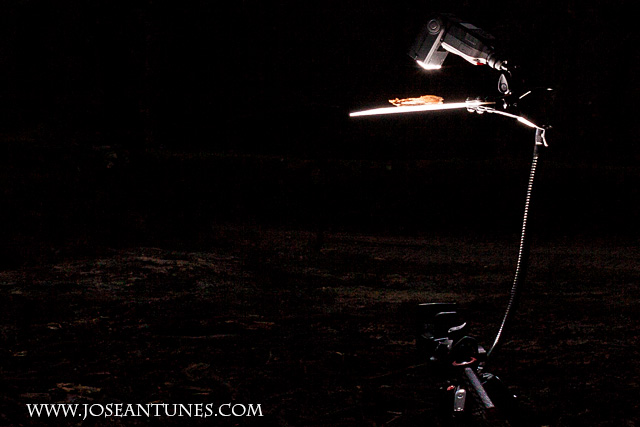A Portable Light Studio for Nature Photographers 17