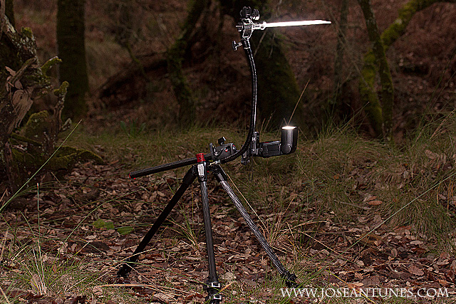 A Portable Light Studio for Nature Photographers 18