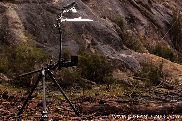 A Portable Light Studio for Nature Photographers 19
