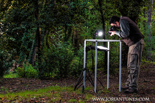 A Portable Light Studio for Nature Photographers 22