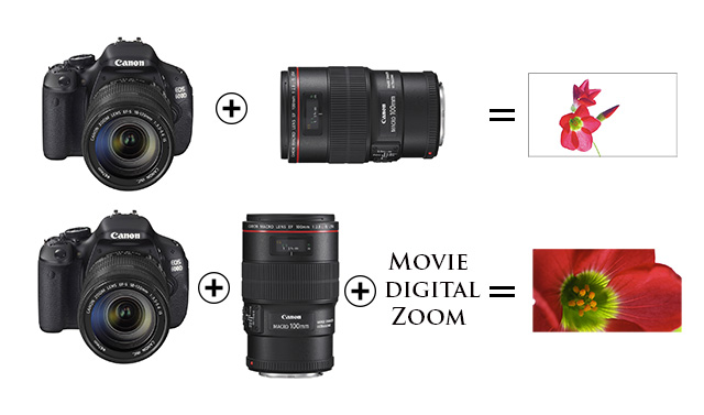 EOS 600D/Rebel 3Ti: The Best and Cheapest DSLR for Video 15
