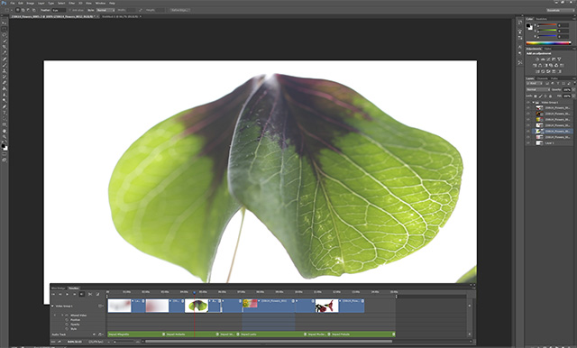 Video Editing in Photoshop 8