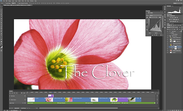 Video Editing in Photoshop 7