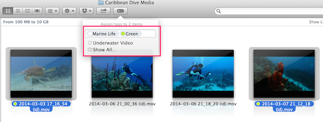 Fig 8. Tagging clips in the Finder.