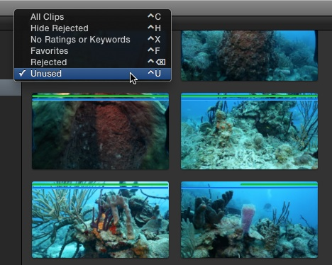 Fig 15. Filtering Browser clip by unused media.