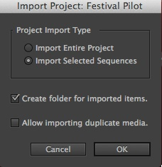 Adobe Premiere Pro CC addition project import options