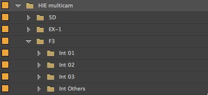 Adobe Premiere Pro CC preserve folder