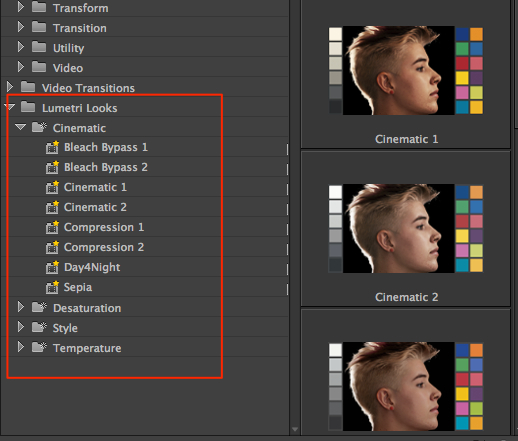 An Early Look at the Next Version of Adobe Premiere Pro by Scott