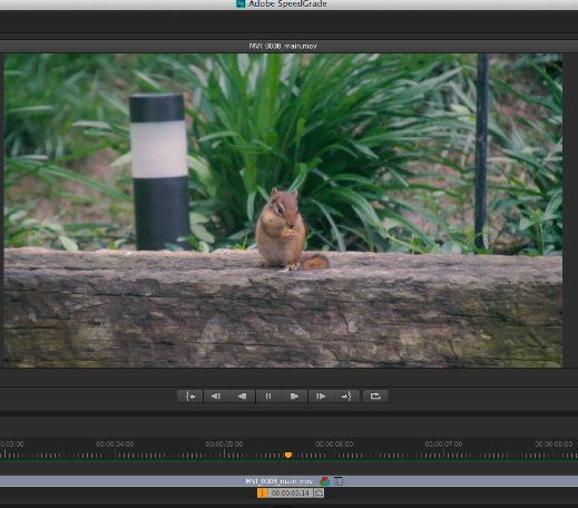 An Early Look at the Next Version of Adobe Premiere Pro 65