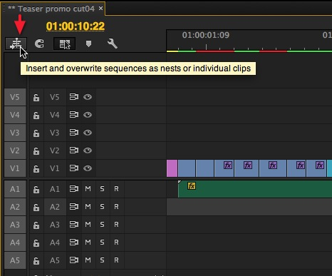 Adobe Premiere Pro CC nests or individual clips