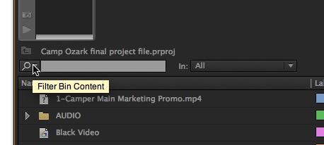 Adobe Premiere Pro Filter Bin Content
