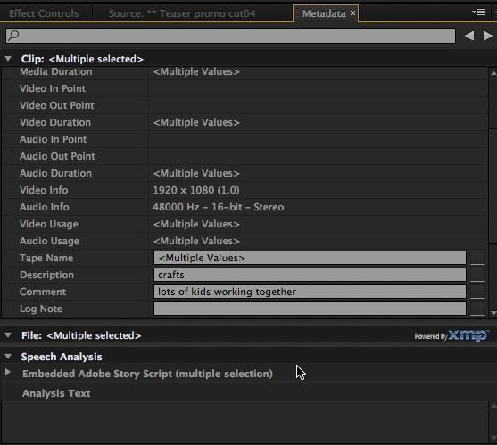 Adobe Premiere Pro Metadata tab