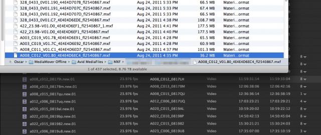 Premiere Pro CC avid media files