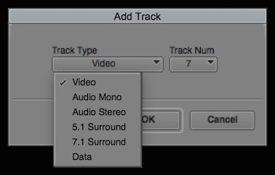 Day 22 #28daysofquicktips - Add a Specific Track Number in your Avid Media Composer Timeline 8